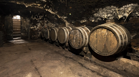 Weinkeller im Weingut Peter Lauer an der Saar